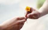 Aprenda a perdonar