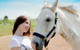 Remedio de Flores de Bach nº 120 Estrés en caballos